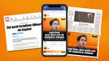 Newsletter articles and online posts about the SIXT campaign