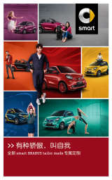 Chinese ad for smart